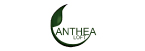 Motel Anthea Loft-logo