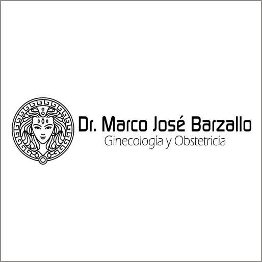 Barzallo Salazar Marco José Dr.-logo