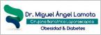 Lamota Miguel Ángel-logo