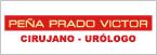 Peña Prado Víctor Miguel-logo