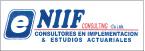 E-NIIF Consulting Cia. Ltda.-logo