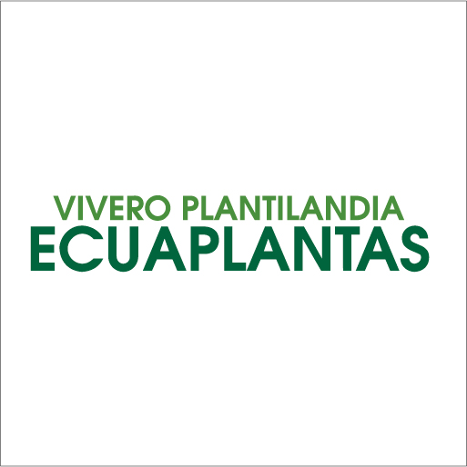 Vivero Plantilandia Ecuaplantas-logo