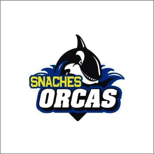 Academia de Natación Snaches Orcas-logo