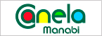 Radio Canela 89.3 FM-logo