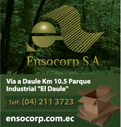 Ensocorp S.A.