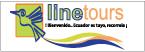 Logo de LINETOURS+S.A.