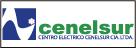 Logo de CENELSUR+Centro+El%c3%a9ctrico+Cia.+Ltda.