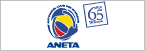 Logo de Aneta
