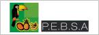 Logo de Productos+Elaborados+Bol%c3%advar+S.A.