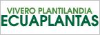 Logo de Vivero+Plantilandia+Ecuaplantas