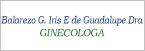 Logo de Balarezo+G.+Iris+E+de+Guadalupe