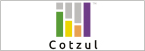 Logo de Telerepuestos+Audio+Cotzul+S.A