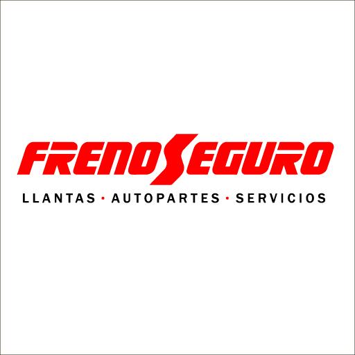 Logo de Frenoseguro+Cia.Ltda.